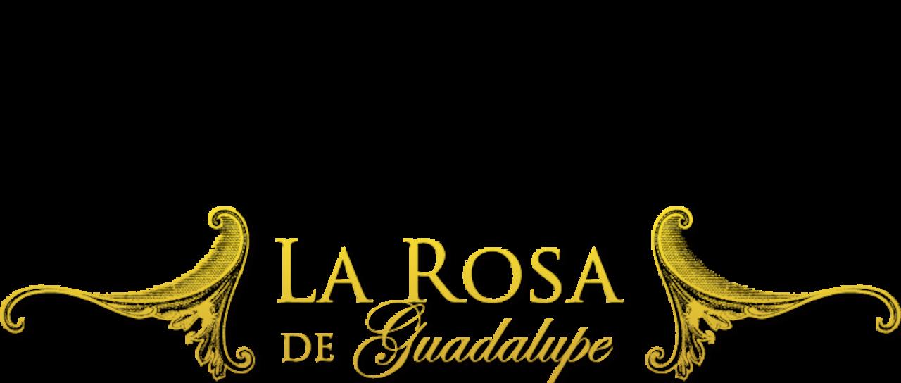 la rosa de guadalupe season 1 download