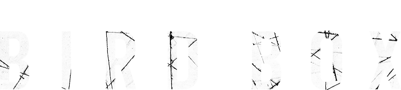 Bird Box Netflix Official Site